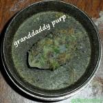 GrandDaddy Purp